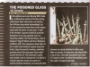 The Poisoned Glass_Terrorizer_Review_May 2016 Issue